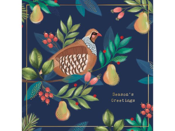 Image of Bright Partridge Christmas cards – a partridge in a pear tree.