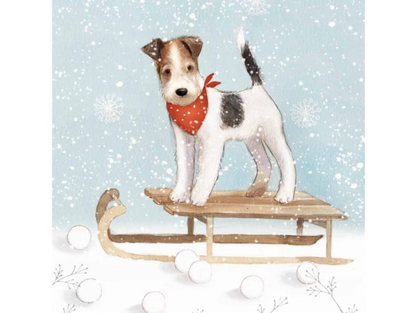 Image of Dog on a Sledge Christmas card – a dog on his sledge in the snow