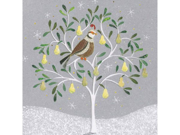 Image of Perching Partridge Christmas card – illustrated Partridge in a pear tree