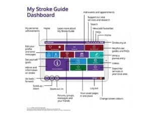 Image of My Stroke Guide start guide