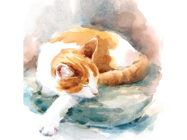 Painting of a cat sleeping on the ground.